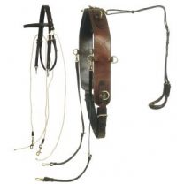 Ord River Breaking and Mouthing Leather Harness