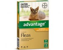 Advantage Cat Under 4kg Small 4 Pack