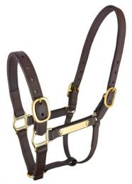 PN Deluxe Headstall Nameplate Brown