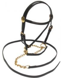 Indian Leather Led In Bridle & Chain Lead Minature