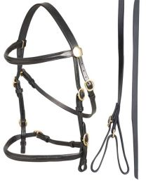 Aintree Leather Led In Bridle & Lead Black