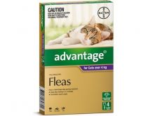 Advantage Cat Over 4kg Large 4 Pack