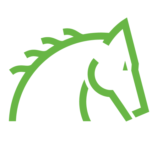 Thorowgood T8 All Purpose Compact Saddle High Wither Black 175